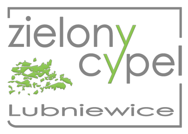 Zielony Cypel - rental of houses and apartments, organization of weddings, integration events and occasional events